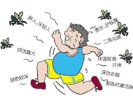 为什么蚊子总喜欢亲你2019招蚊子体质大揭秘
