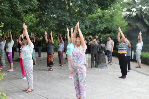 济宁百花公园里上瑜伽课 炎热天气阻挡不了健身的热情