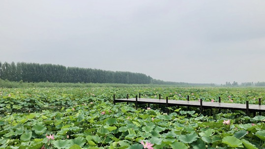 http://www.weixinrensheng.com/lvyou/2215636.html